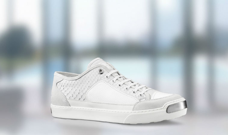 Louis vuitton sport sneakers